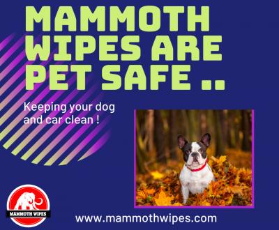 Pet Safe Wipes